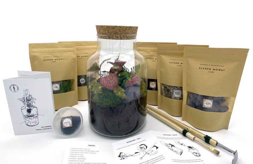 Take Your Green Fingers to the Next Level with the At Home: Terrarium Kit